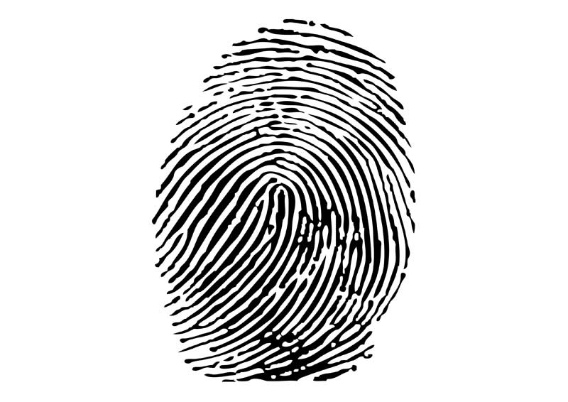Criminal history records at the touch of a button – automated fingerprint system launched