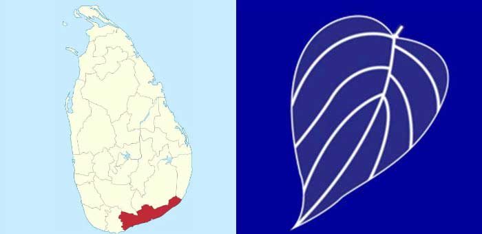 Provincial Council Elections: UNP wins in Galle polling division