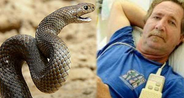 Can you guess what this man did after being bitten by a deadly snake?
