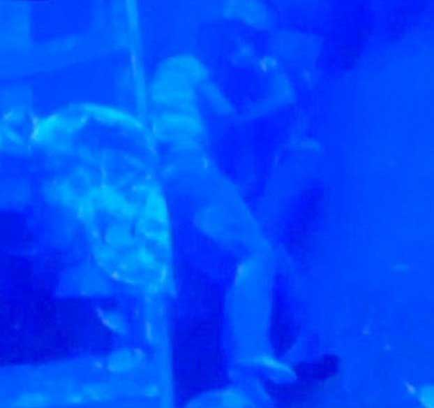 Heartbreaking underwater image shows drowned young couple clinging to each other
