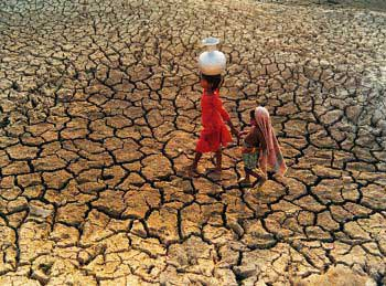 Debts loom over drought-affected farmers; more difficulties in the horizon
