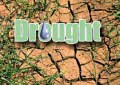 DMC says over 2.5m affected by drought – Sirasa Shakthi Sahana Yathra to reach out