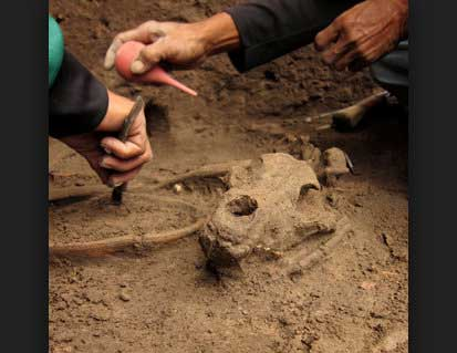 Balangoda discoveries are about 3,150 years old – Archaeologists claim