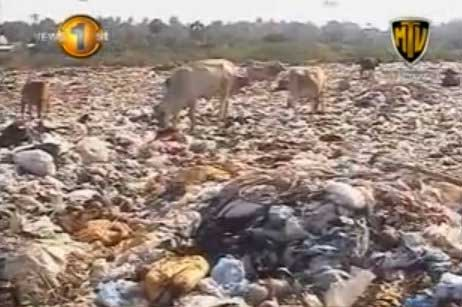 Negombo MC's garbage disposal schemes irk residents