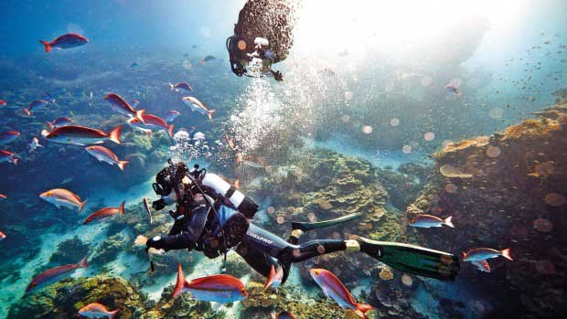UNESCO moves Great Barrier Reef off 'in danger' list