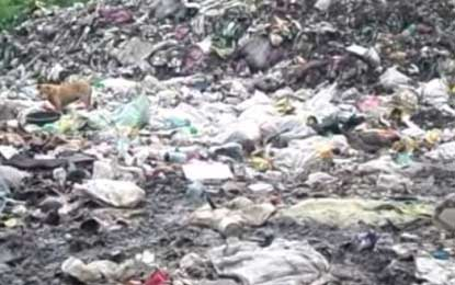 Archbishop Malcolm Cardinal Ranjith cautions authorities over dumping garbage in Muthurajawela
