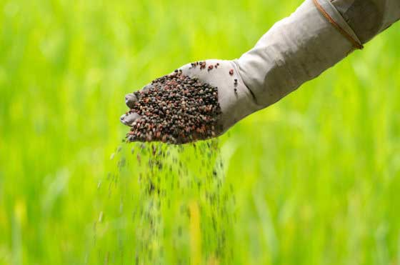 Agriculture Ministry steps in to stem fertiliser discrepancies