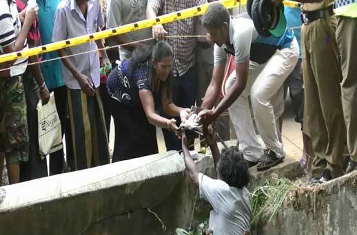 Body of abandoned infant found in Kandy