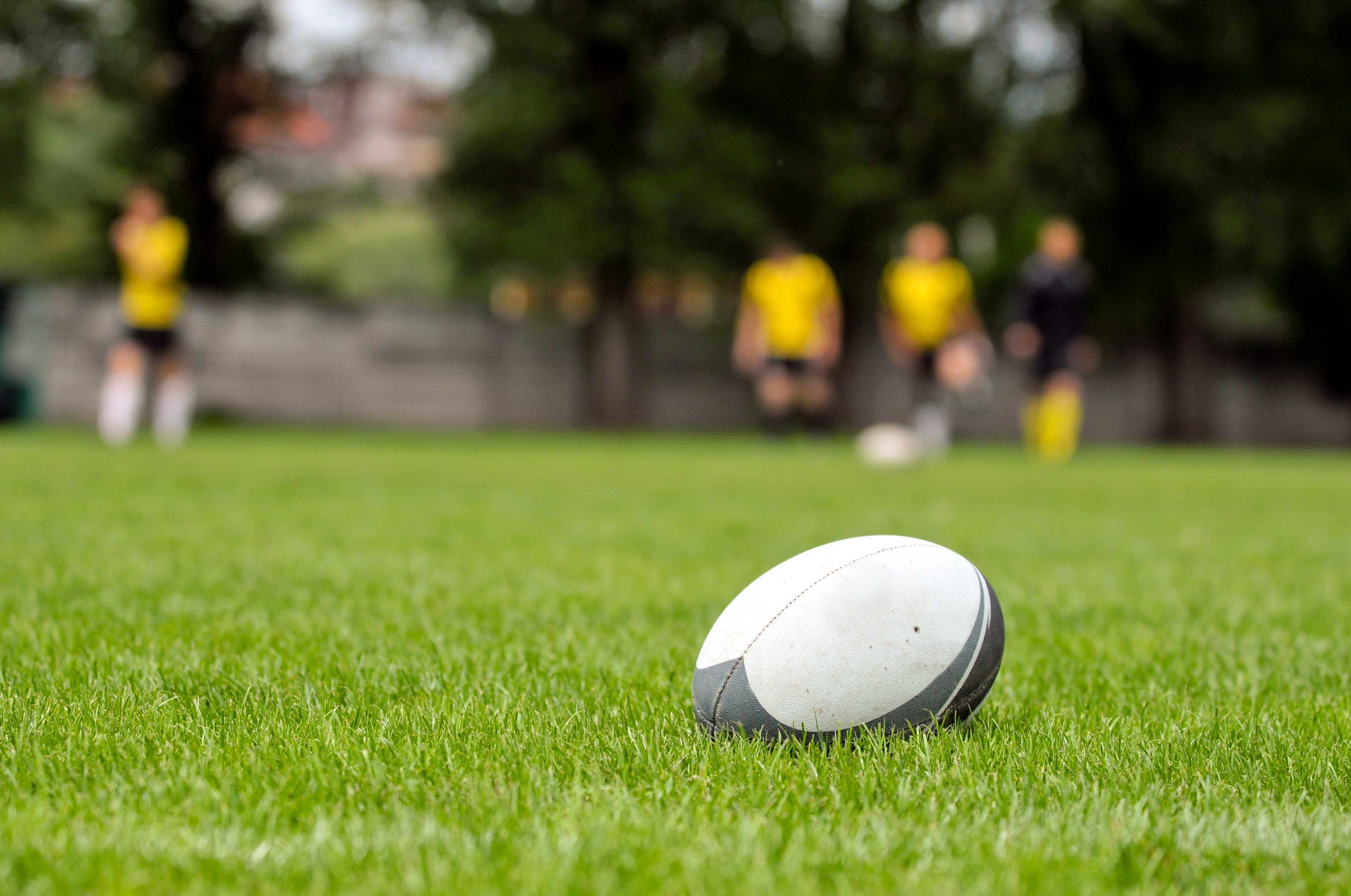 Rugby ball at green grass. Photo taken at rugby training.