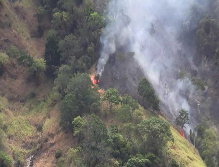 Wild fires rage through acres of Ella, Yatiyantota forests