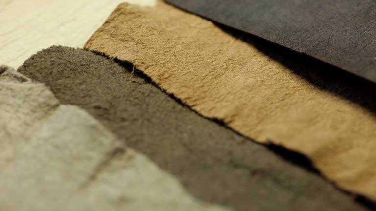 Textile takes an evolutionary change