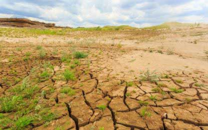 More than 600,000 affected by prevailing dry weather conditions