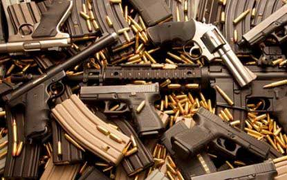 Firearms Ordinance will be amended: Defence Secretary