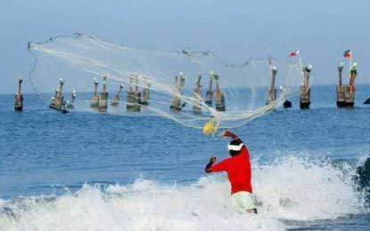 Thirteen fishermen arrested off Mannar, Trincomalee seas