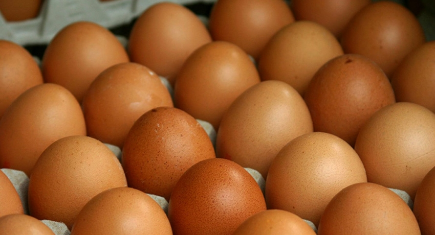 Government stops importing eggs