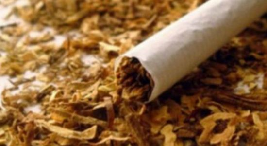14 tonnes of illegal tobacco seized by customs at Colombo Harbor