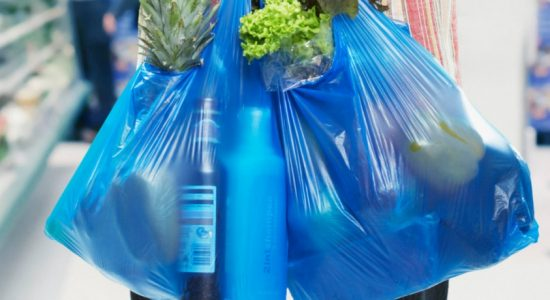 Central Environment Authority cracks down on illegal polythene