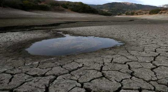 Government to grant Rs 5000 drought allowance