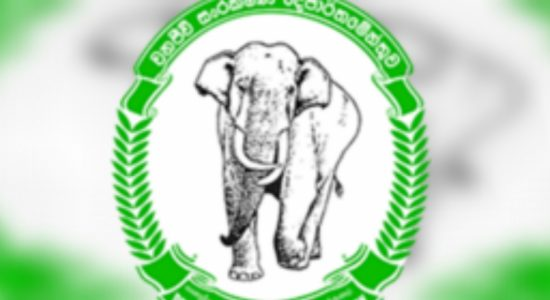 Wildlife officers in Mahaweli & Trinco to strike