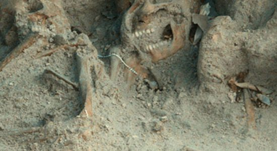 Mannar mass grave samples to be sent to US laboratory