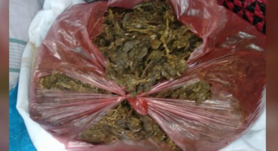 Suspect nabbed with 2kg of Kerala cannabis