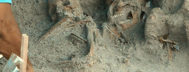 Mannar mass grave samples sent to the US