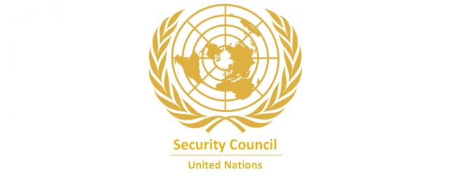 UN Security Council condemns attack on UN Peacekeepers