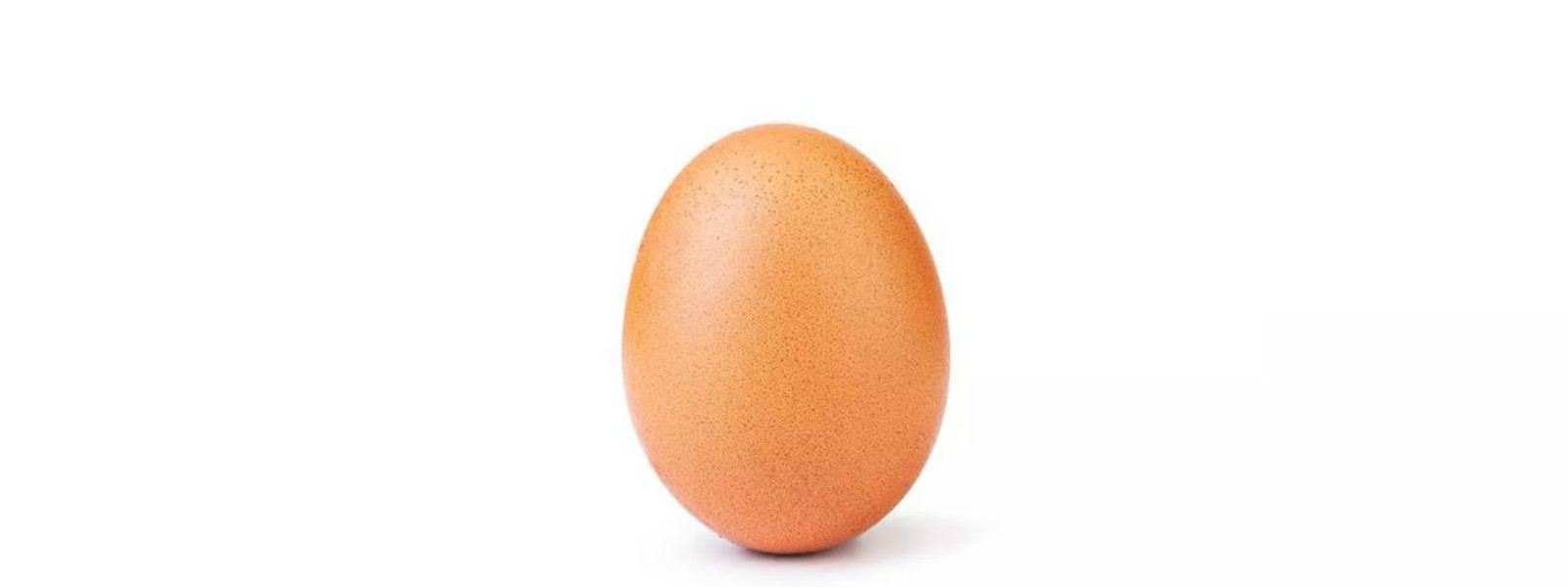 An egg; the heart throb of 28 million Instagramers