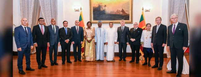 New Ambassadors present their credentials to the President