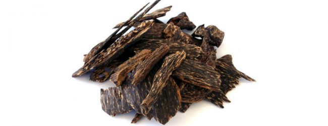 Agarwood worth Rs. 1.2Mn confiscated at BIA