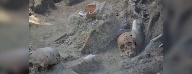 Mannar Mass Grave: Carbon Dating Report Expected Tomorrow