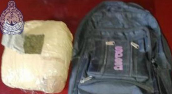 Navy apprehends a person with 2 kg of Kerala Ganja