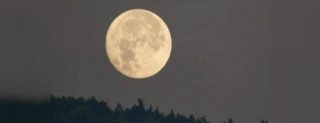 It's a super moon tonight!
