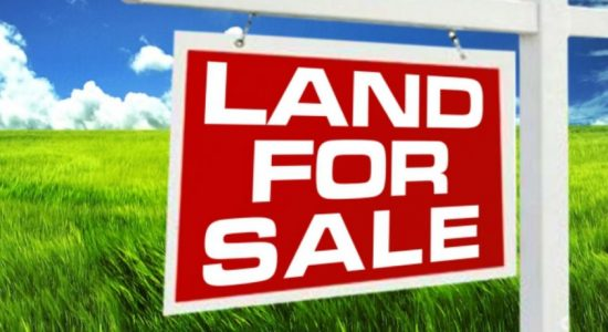CBSL releases Land Price Index for second half of 2018
