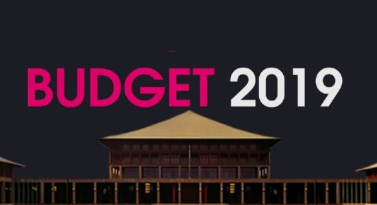 Fourth day of committee stage debate on 2019 budget